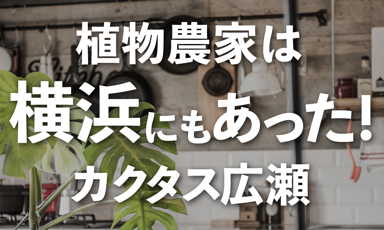カクタス広瀬TOP